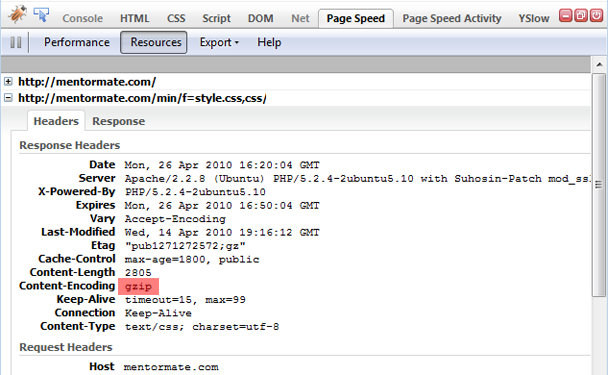 """Google's Firebug """"Page Speed"""" extension gzip enabled"""