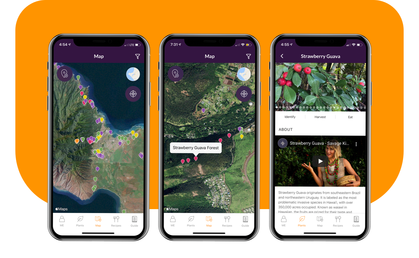 Savage Kitchen app Map feature